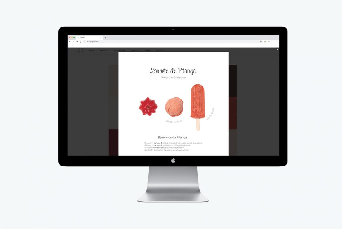 webdesign_friic#2